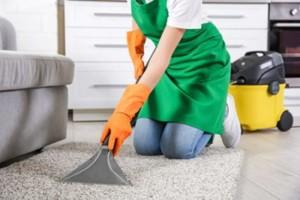 експерти по чистотата